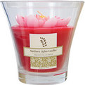 WATER LILY SCENTED Candles von Water Lily Scented